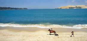 opononi beach.jpeg