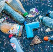 Plastic bottles in a lake