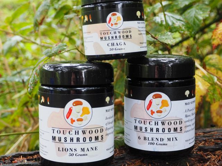 Introducing Touchwood Medicinal Mushroom subscriptions!