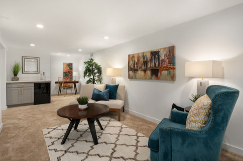 Eccentric Living Room Remodeling