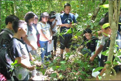 School in the jungle