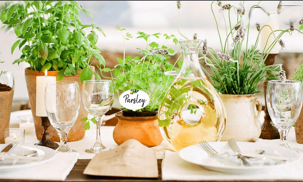 herbs in terracotta pots table setting sustainable wedding ideas
