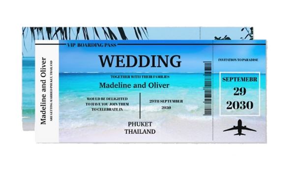 wedding plane invitation.png