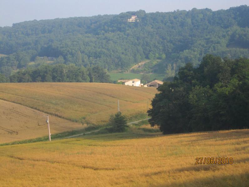 mandarre-juli2010-049.jpg