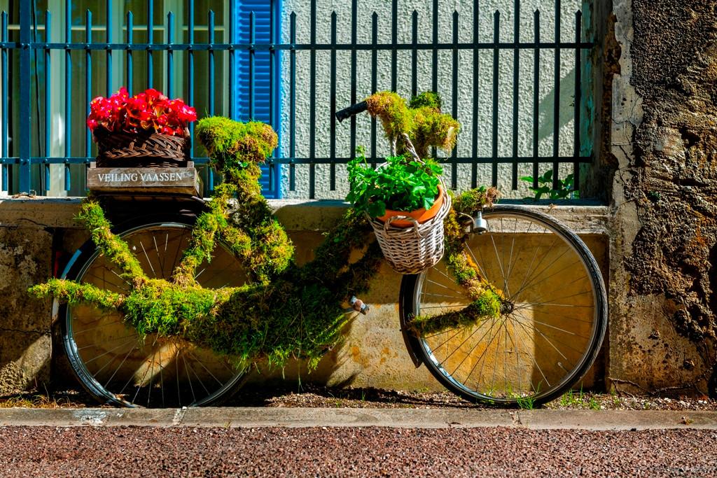 Sainte Anne-2020-fiets.jpg