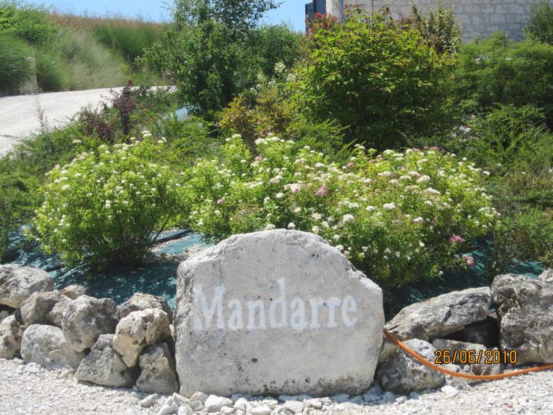 mandarre-juli2010-046-1.jpg
