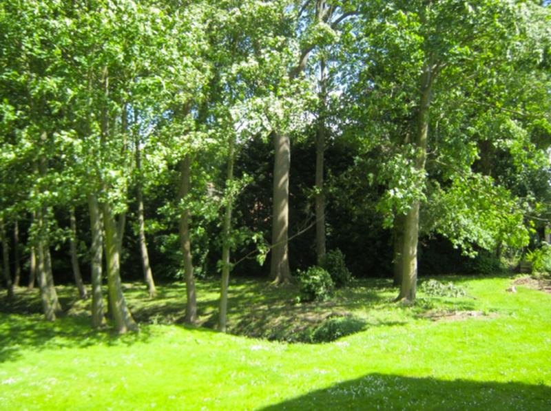 Chateau-de-Moulin-le-Comte-B-B-gastentaf