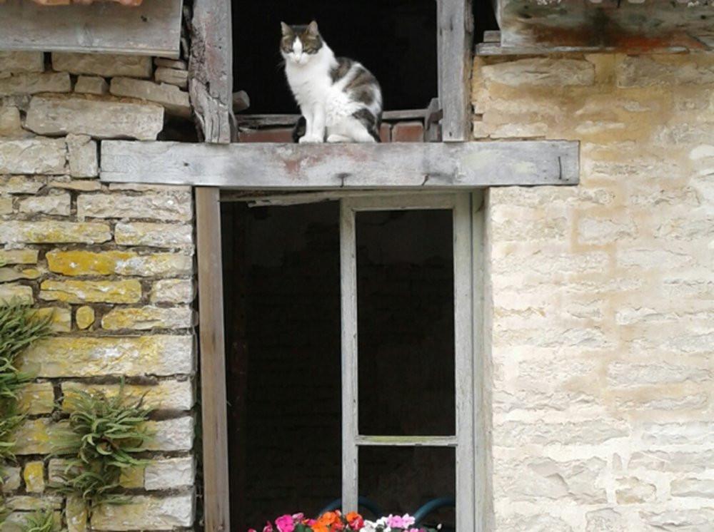 Chambres-d-hotes-Sainte-Anne (9).jpeg