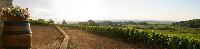 Fietsen-in-Bourgogne.jpg