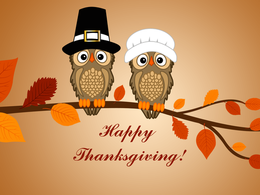 Happy Thanksgiving from Your Dedicated Content Provider Iris Content!