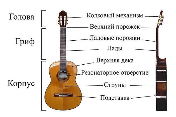 гитара, уроки гитары, уроки гитары в москве, уроки гитары со скидкой, курсы гитары