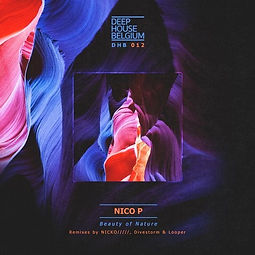 Nico P - Beauty Of Nature