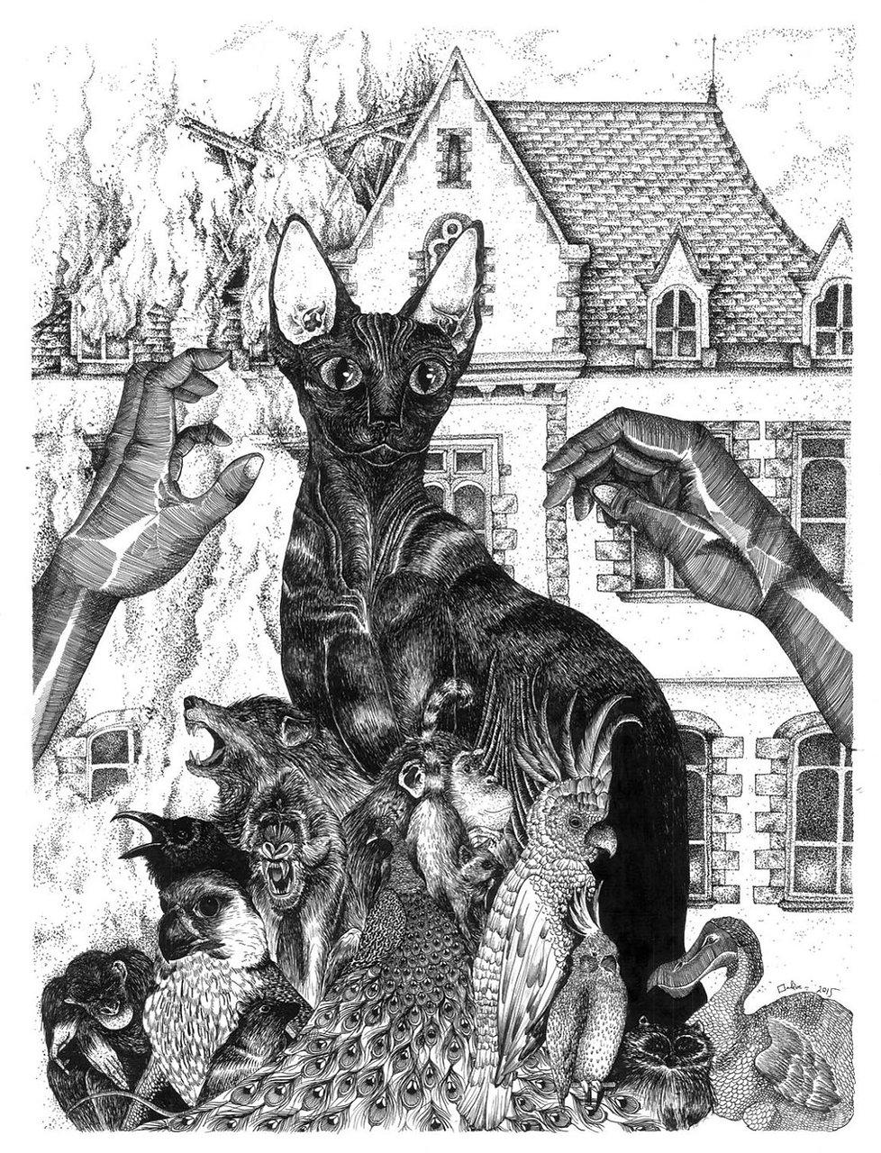 illustration noir et blanc Faune Duelle