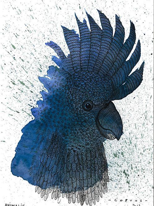 Reproduction Beaux-Arts - Animalis II