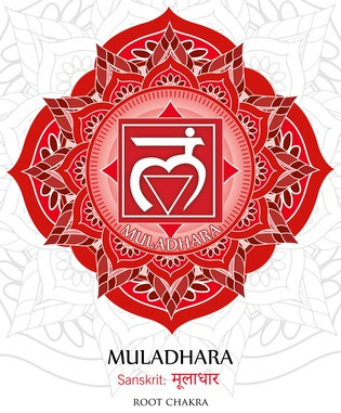 Körperenergie – Muladhara-Chakra - Dein Body - (5 Minuten)
