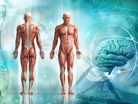Mit deinem Geist deinen Körper direkt beeinflussen