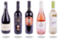 WESTERNCAPEWINES_WINES VARIOUS 1.png
