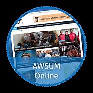 AWSUM Online 3.png