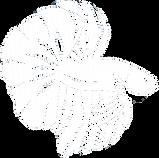 Betta logo.png