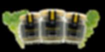 mustard_set.png