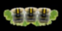 mustard_set_s.png