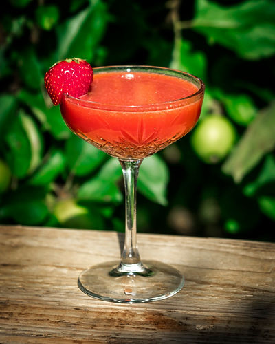 red sea cocktail