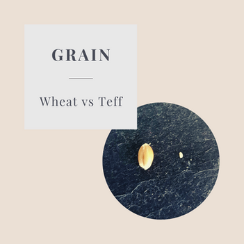 TEFF – Tiny but Mighty!