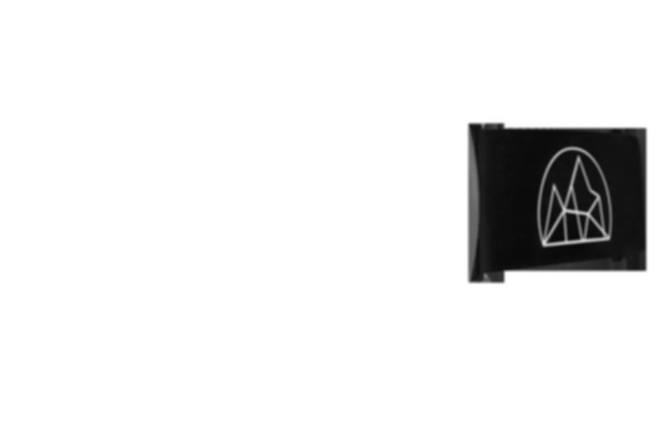 strap_black_logo.png