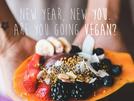 Happy New Year! Have you made the commitment yet to go vegan? Veganuary is here to help you, too.