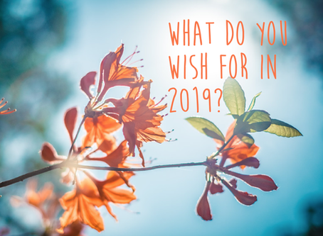 What do YOU wish for 2019? Change and growth for the better is always good.