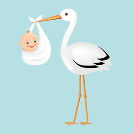 34381342-poster-stork-with-baby-with-gra