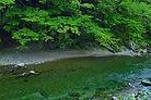 river_00045.jpg