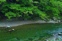 river_00045