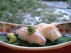 鮎のお寿司
