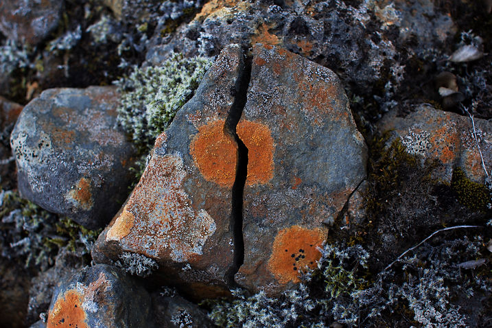Cracked Icelandic rock