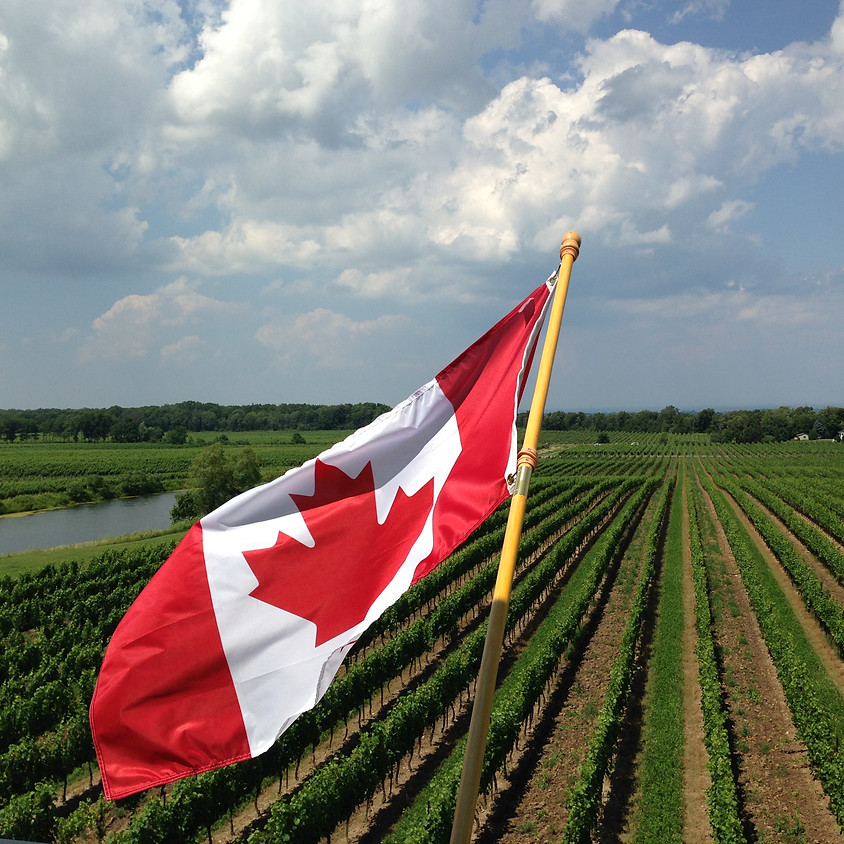 """Harpers Webinar: """"Canada: Wines with a Cool Climate Sensibility"""""""