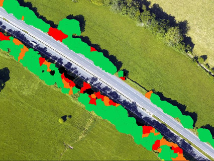 2Excel Geo to develop Earth Observation validation engine to analyse condition of roadside trees
