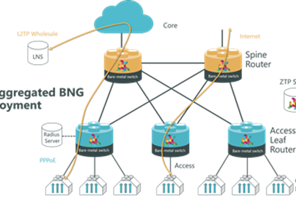 RtBrick announces BNG (Broadband Network Gateway) software for disaggregated networks