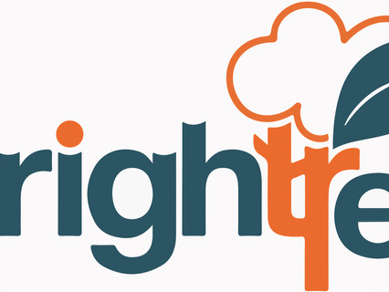 Brightree signs up as new Inmarsat fleet connect dedicated bandwidth application provider