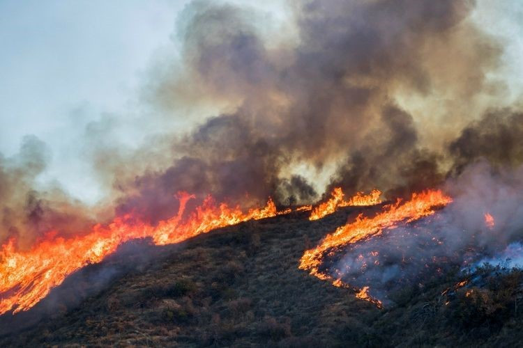 CAL FIRE's Northrop Grumman-produced Computer-Aided Dispatch system will soon be able to receive wildfire information from remote sensing data, allowing firefighters to track and combat blazes quicker and more precisely (Source: Getty Images)