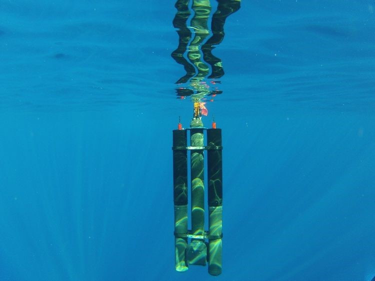 Two Seatrec Inc energy harvesting modules attached to a profiling float going as deep as 1000m.