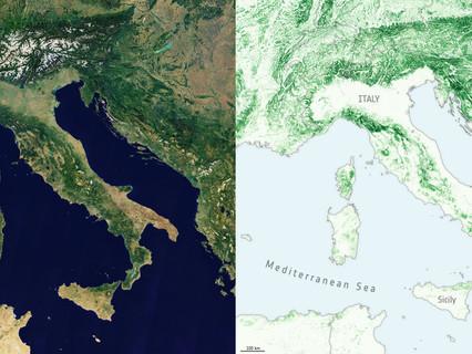 ESA's Climate Change Initiative produces maps to improve forest biomass estimates