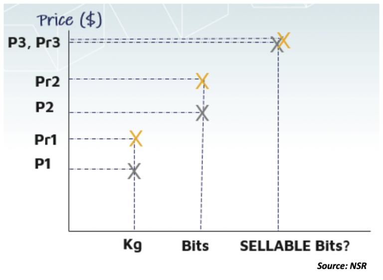 NSR bottom line What drives satellite flexibility: Necessity or opportunity?