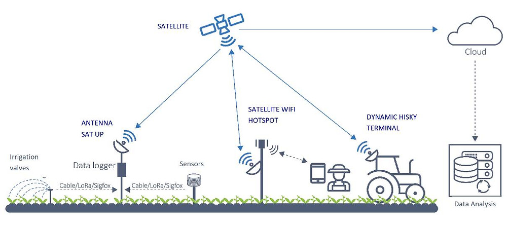 Satellites help drive intelligent management of agricultural and livestock farms