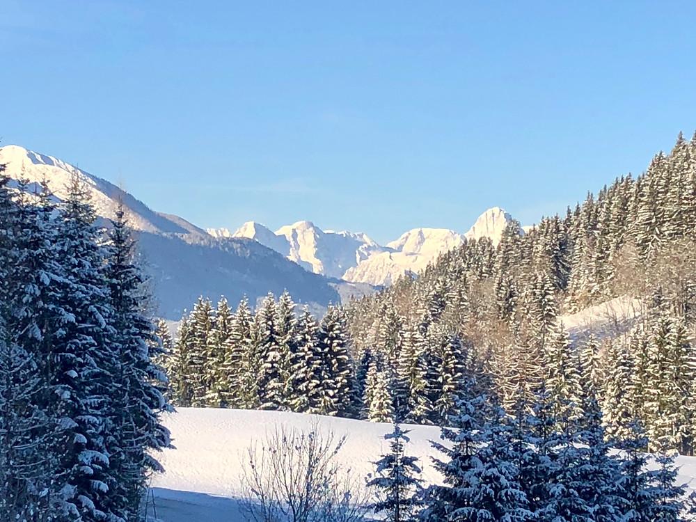 wunderschöner Wintertag am Ferienhof Hintergrabenbauer