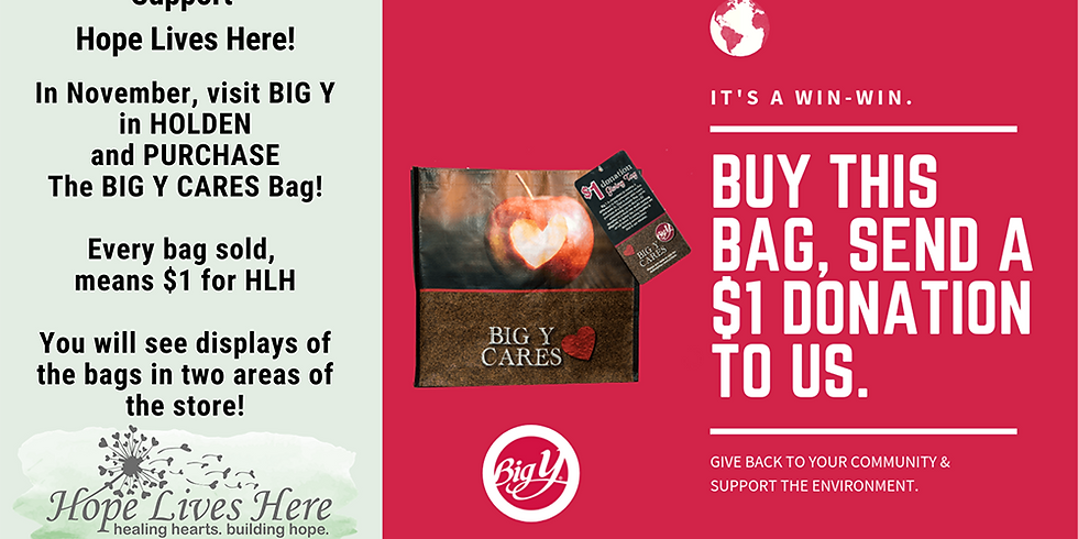 Holden Big Y -- Purchase a Big Y bag and donate to HLH