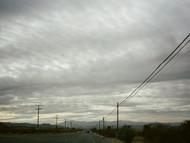 Untitled (Joshua Tree, California)