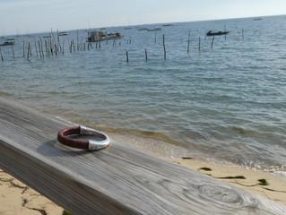 L'Atelier d'Izabou en voyage sur le Bassin d'Arcachon !