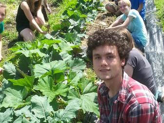 MEHAF Partnership Profile: Alan Day Community Garden
