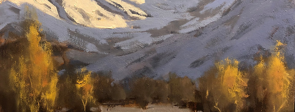 Winter Morning Run